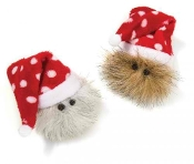 Cat Christmas & Holiday