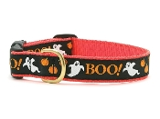 Designer Holiday Dog Collars & Leads:  Halloween, Thanksgiving, Christmas & More