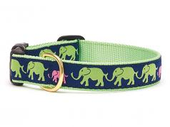 "Dog Collars: 5/8"" or 1"" Wide Leader of the Pach Collar"