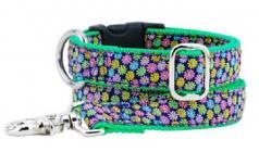 """Dog Collars: 1"""" Wide Margarita Daisy Collar"""