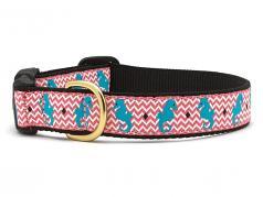 "Dog Collars: 5/8"" or 1"" Wide Seahorse Clip Collar"
