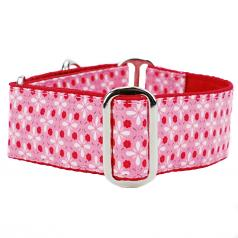 """Dog Collars:  Day in the Park 1.5"""" Wide"""