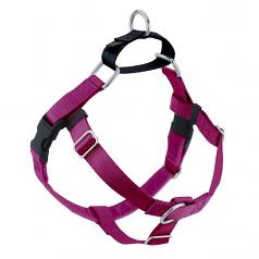 RASPBERRY Freedom No-Pull Harness with Black BACK Loop