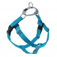 TURQUOISE Freedom No-Pull Harness with Silver Back Loop