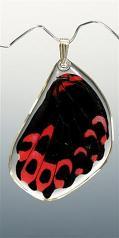 Jewelry:  Butterfly Scarlet Mormon Wing