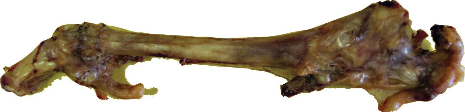 Bone: 100% USA Smoked Whole Lamb Trotter