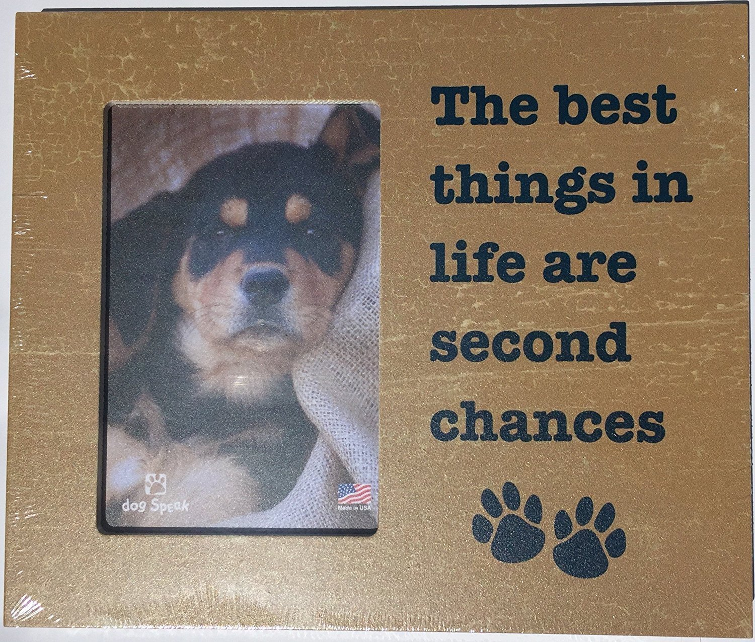 Pet picture frame gifts picture frame the best things in life are second chances jeuxipadfo Images
