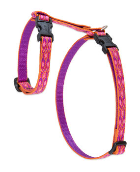 Lupine Cat Harness: Pattern Alpen Glow