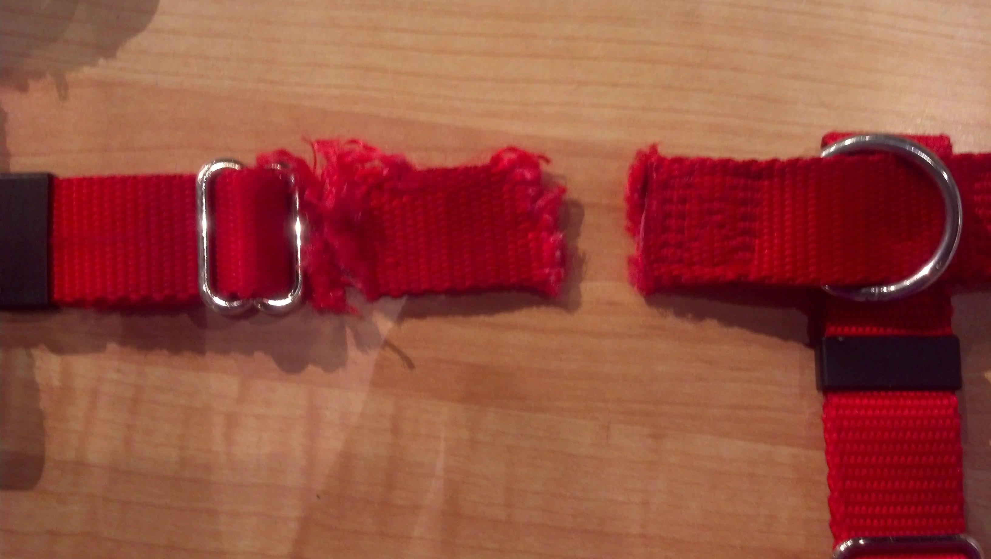 Replacement:  Harness Chewing Warranty REPLACEMENT of Existing Harness (Includes New Harness & Shipping to You)