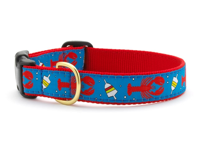 """Dog Collars: 5/8"""" or 1"""" Wide Lobster and Buoy Clip Collar"""