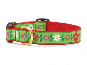 "Dog Collars: 5/8"" or 1"" Wide Holiday, Christmas Poinsettia Canes Clip Collar"