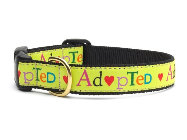 "Dog Collars: 5/8"" or 1"" Wide Adopted Clip Collar"