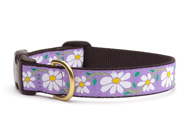 "Dog Collars: 5/8"" or 1"" Wide Daisies Clip Collar"