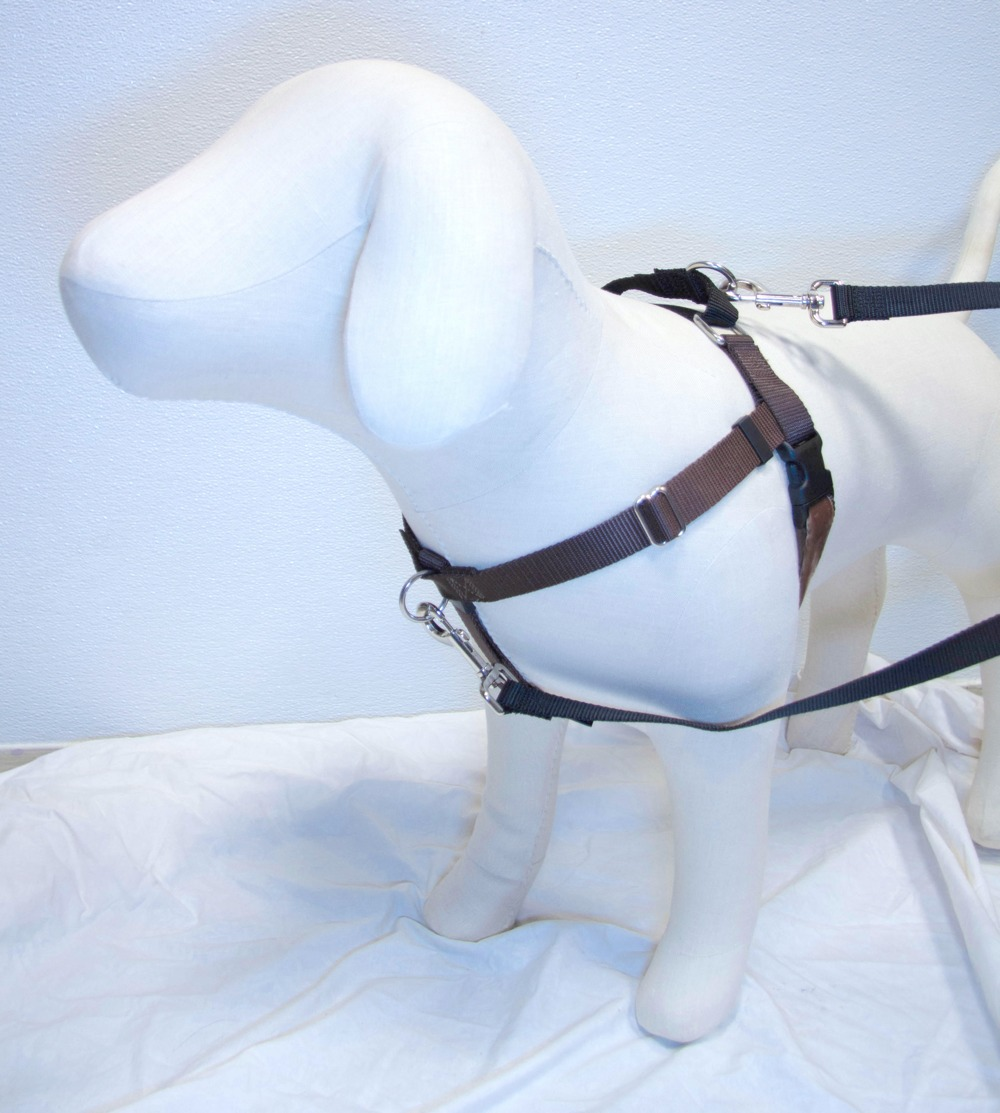 BROWN Freedom No-Pull Harness with Black Back Loop