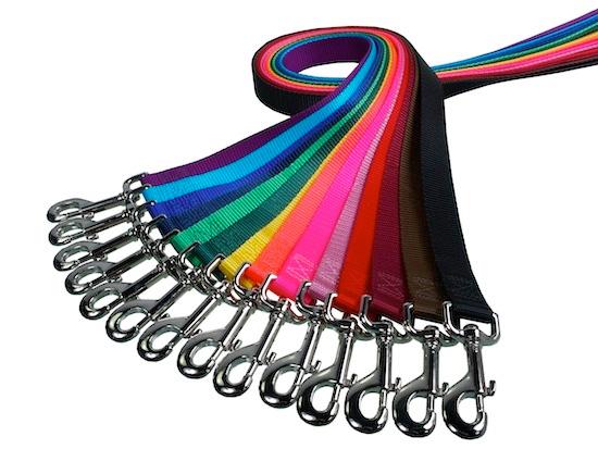 "Lead/Leash: 1"" Wide Traditional Nylon Webbing 6' or 4' Long"
