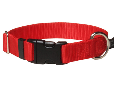 "Dog Collars:  Clip in 5/8"" Width for dogs under 30lbs"