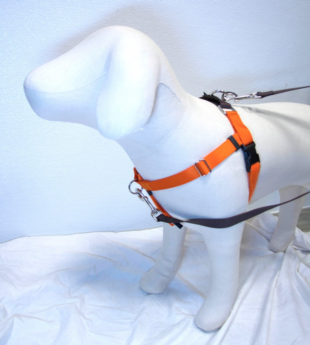 "RUST (Pumpkin Orange) Freedom No-Pull Harness with Brown Back Loop (1"" Width ONLY)"