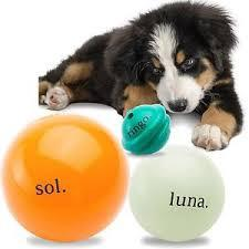 Dog Toy: Cosmos