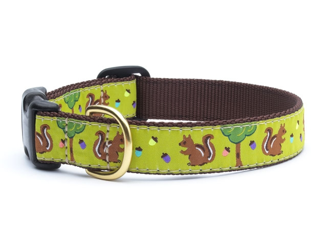 """Dog Collars: 5/8"""" or 1"""" Wide Nuts Clip Collar"""