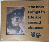 "Gifts:  Picture Frame ""The Best Things in Life are Second Chances"""